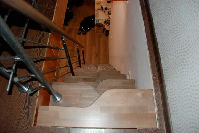 фото гусиной лестницы на металлическом каркасе